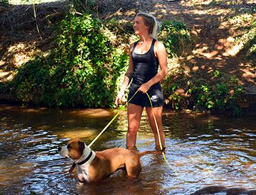 Journée éducative - dressage éducation canine - chien chiot - les pennes mirabeau - vitrolles - marignane - marseille - cabriès